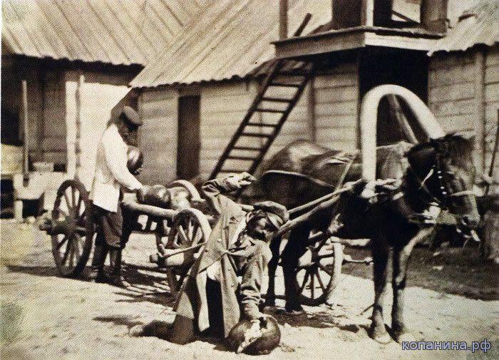 Донской альбом - казаки носят арбузы