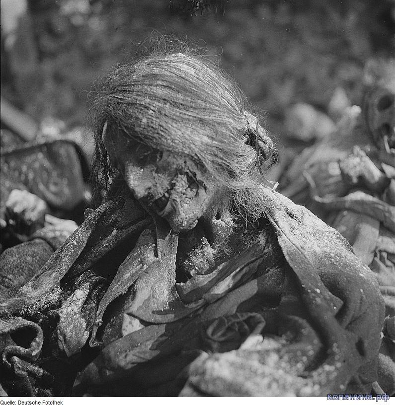 страшные фото второй мировой