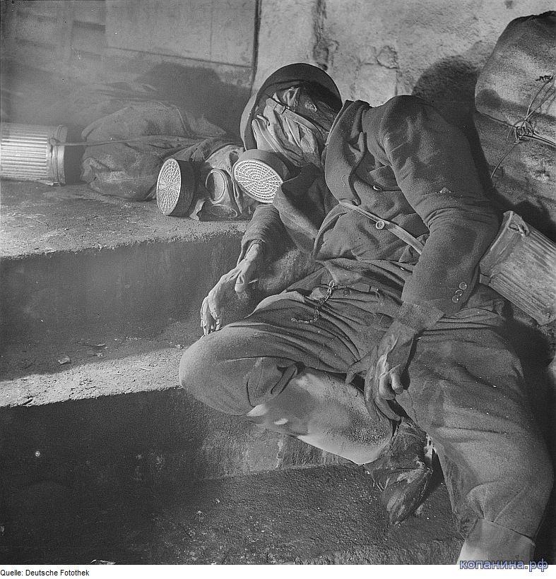 погибшие немцы при бомбардитровке дрездена союзниками