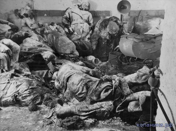 погибшие немцы
