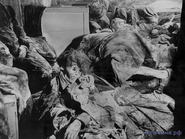 страшные фото войны
