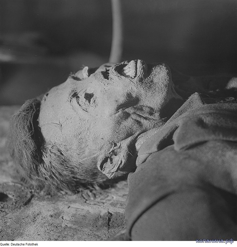 погибшие немцы во второй мировой