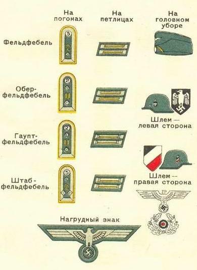 Знаки различия немецких кавалеристов