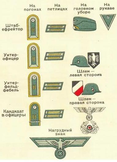 Унтер офицеры вермахта знаки различия погоны