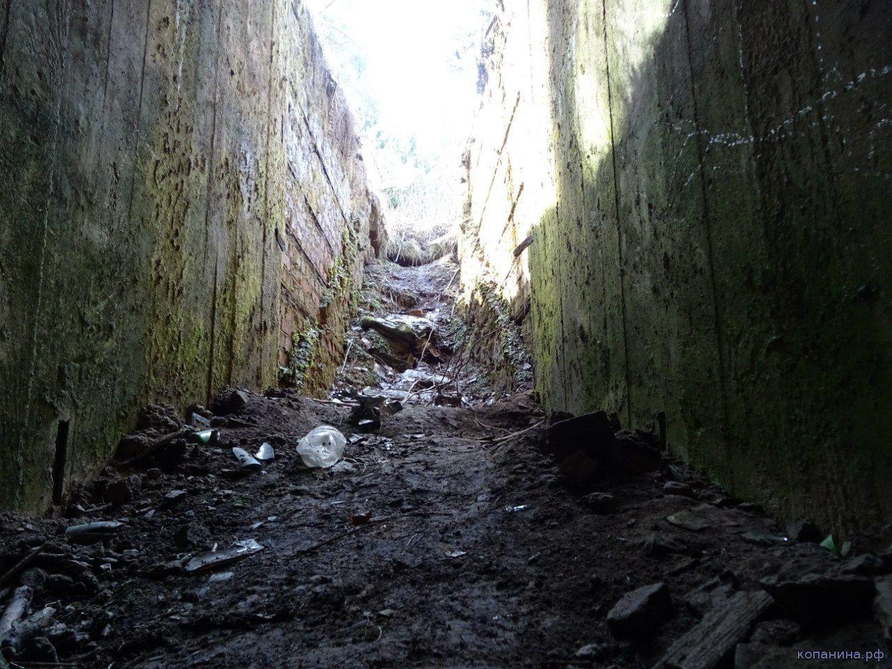 немецкий бункер в беларуси, оршанский район