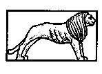 31 пехотная дивизия вермахта эмблема